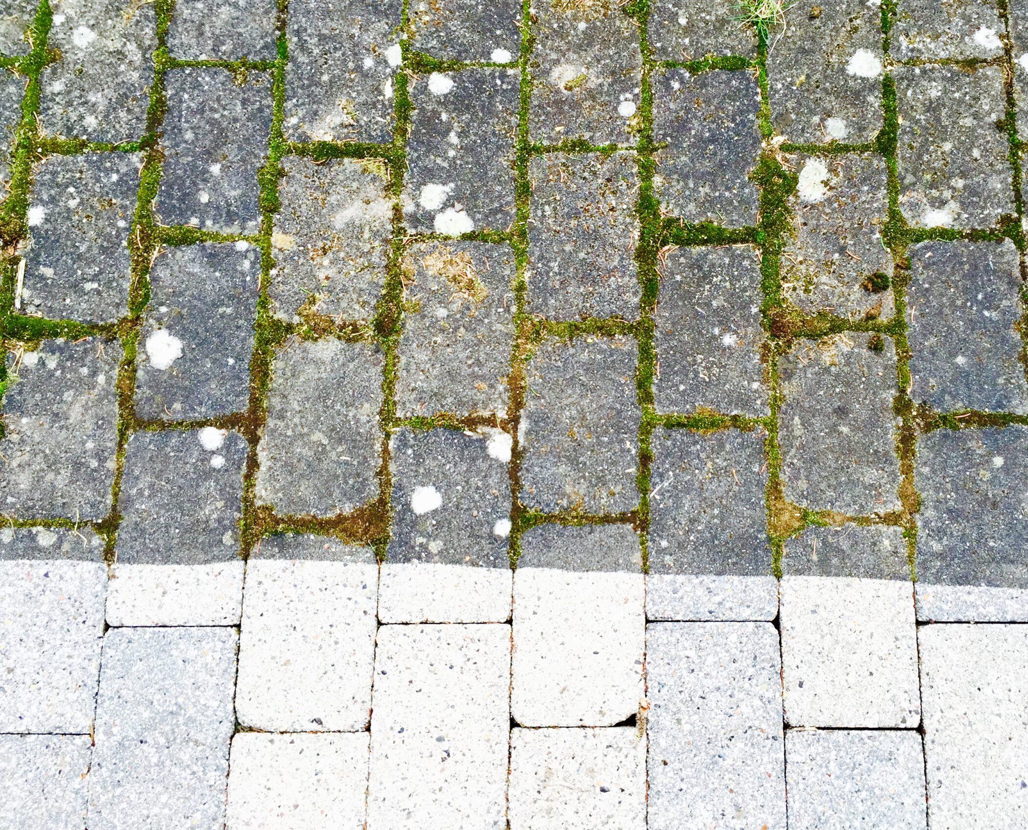 nyrenset tæppe